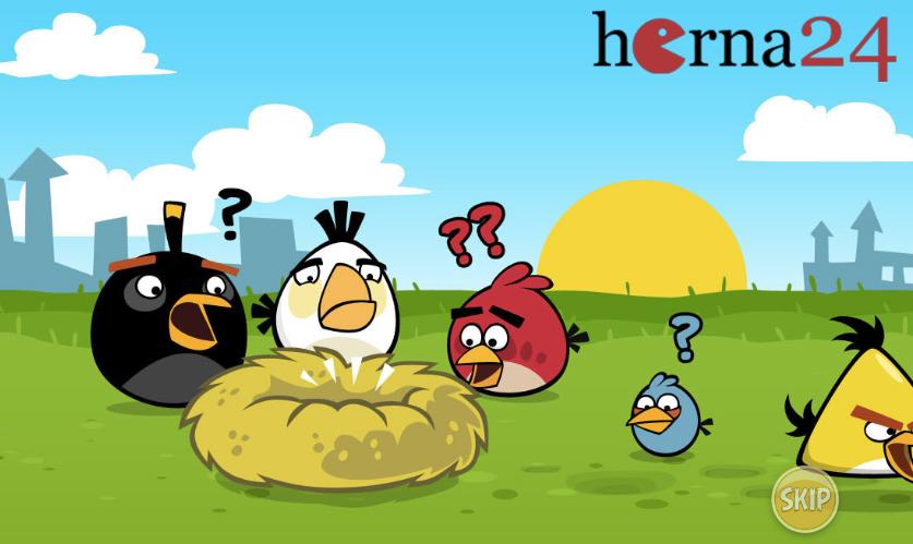 12488-herna